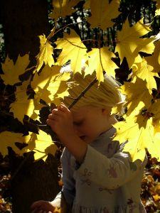 Outdoor and nature activities for kids