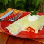 4-5-ingredient-sour-cream-chicken-enchiladas