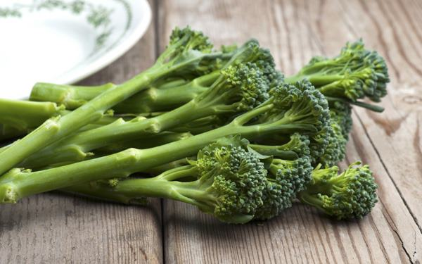 Fall Vegetable Broccoli - Moms Who Think
