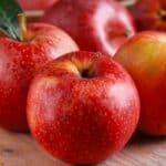 Fall Apple Baking Recipes