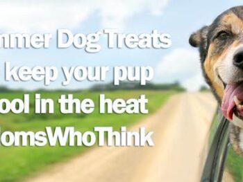 Homemade Summer Dog Treats