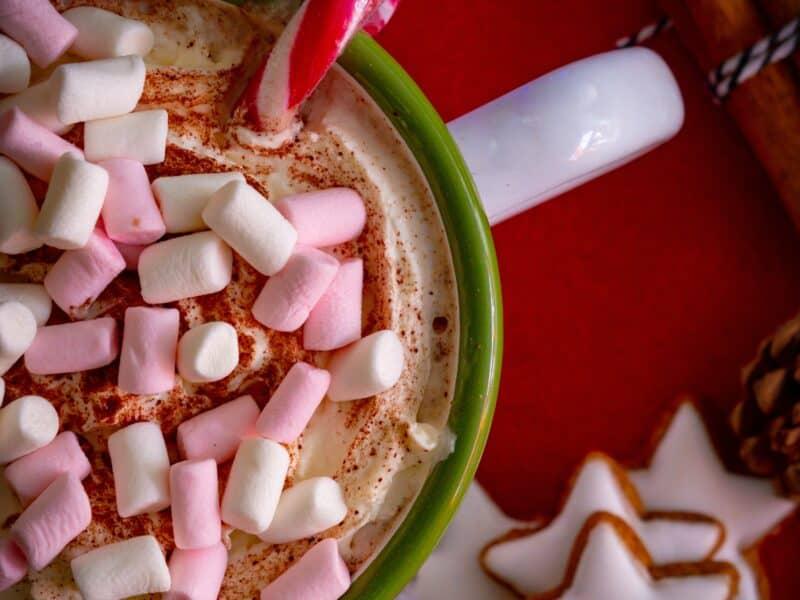 Chocolate Peppermint Fudge Mix Mug