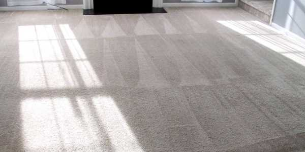 Vacuum Direction for a Cleaner Carpet