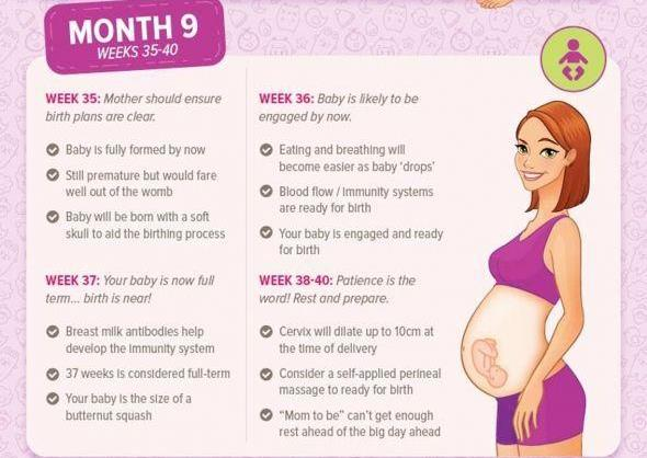 Pregnancy Month by Month - Month 9